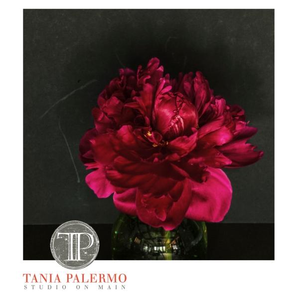 RedArtisticFB©TaniaPalermoJune2016-1