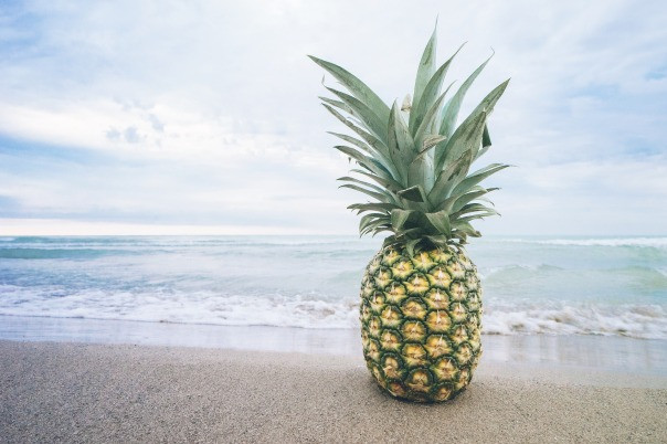 pineapple june 24 newsletter